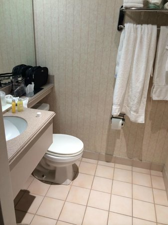 Hollywood Hotel: small bathroon