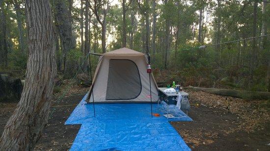 Dwellingup Chalets & Caravan Park: The tent