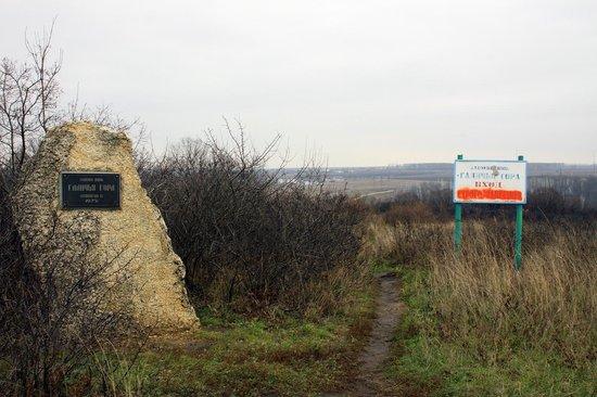 Reserve Galichya Gora