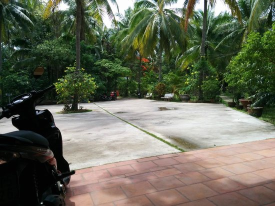 Sea Star Resort: View from reception to the front driveway