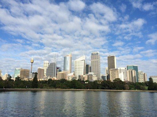 Royal Botanic Gardens : Views across to the city
