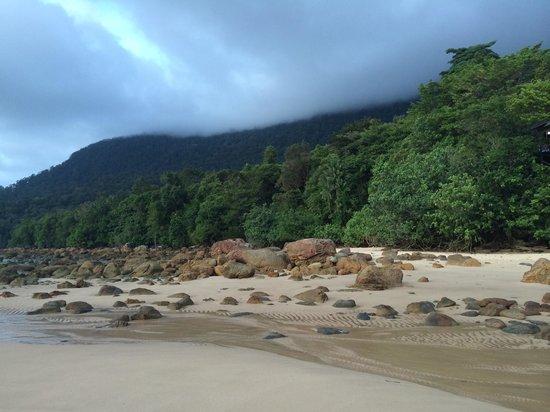 Permai Rainforest Resort: Strand, oben rechts gleich das Restaurant. Suuuuuuper feiner Sand