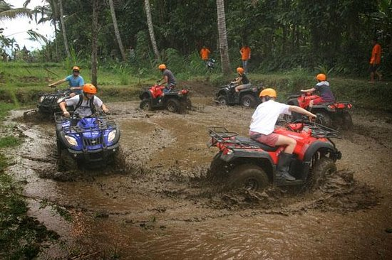 Bali Atv Tour Review