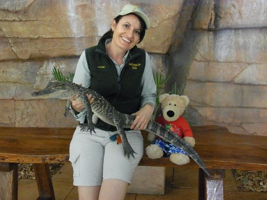 Australia Zoo : Henry and an Aligator