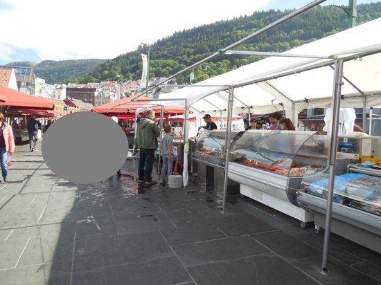 Fish Market : 魚市場