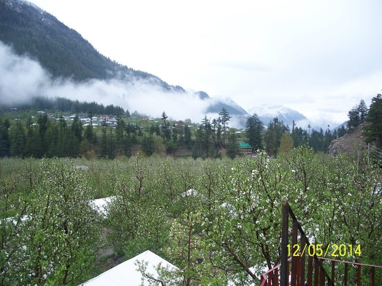Apple Orchard Farm and Camping: Sangla Valley as seen from AOFC