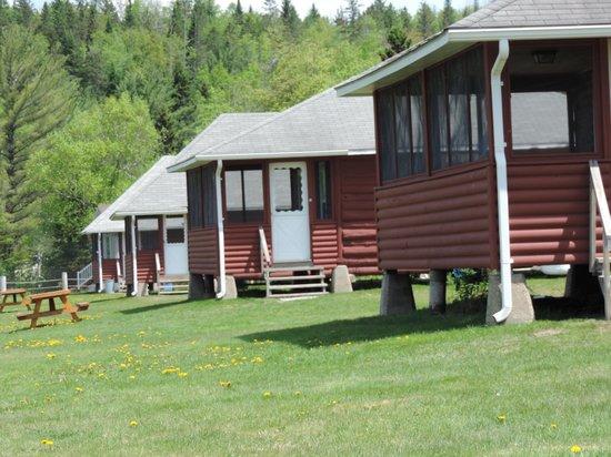 Jackson's Lodge: cabins