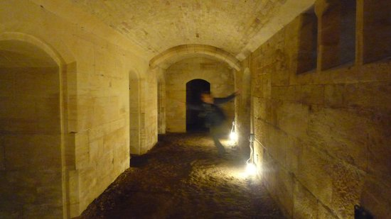 Woodchester Mansion: Down in the basement
