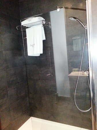 Sercotel Coliseo: Shower