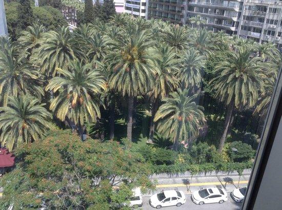 Renaissance Izmir Hotel: City view