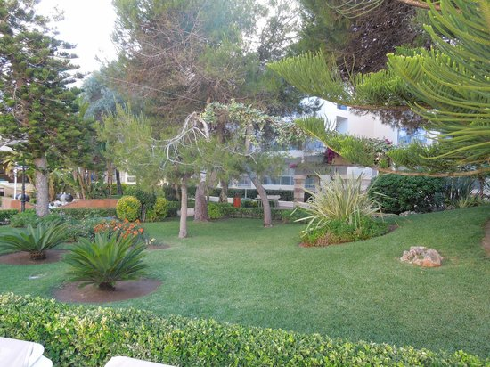 Family Life Alcudia Pins: Grounds