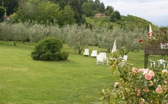 Agriturismo Nobile : view from the garden