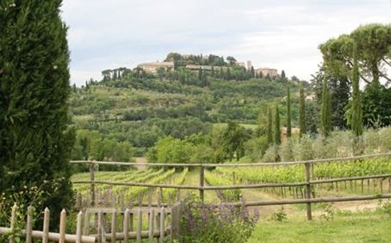 Agriturismo Nobile: view from the garden