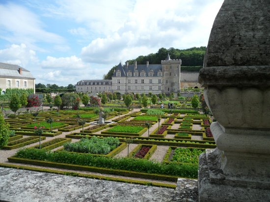 Chateau de Villandry : How would you dare pick a lettuce for tea?