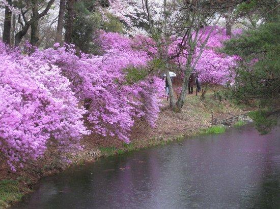 Taman Umamizuka