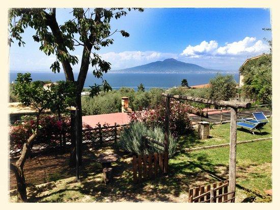 Casale Antonietta: View from hotel