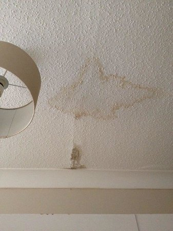 The Cottonwood Boutique Hotel: Damp on ceiling