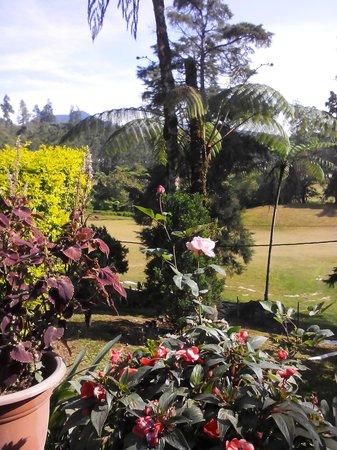 Casa dela Rosa Hotel: view