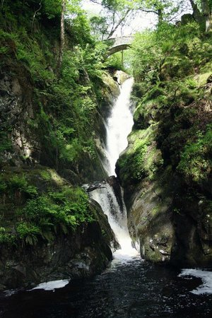Lake District National Park Guided Walks - Walks to Inspire: Aira Force (65ft waterfall)