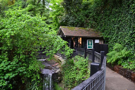 Shanklin Chine: Entrance to the chine from inside.