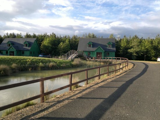 Lakeside Lodge Golf Centre: the lodges circle an island with the pond stocked with carp