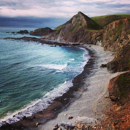 Docton Mill Gardens & Tea Rooms: Make sure you take a walk to the beach!