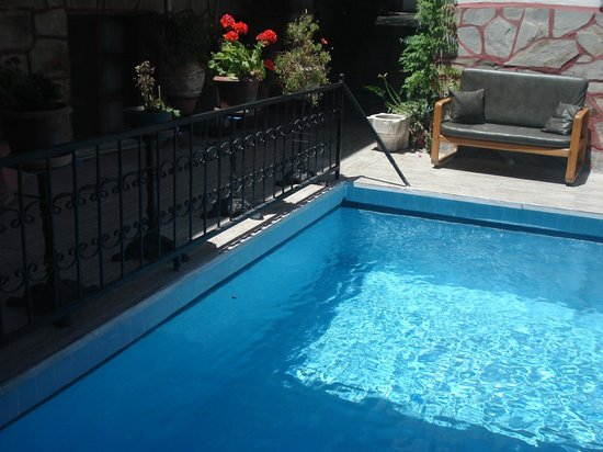 Sezgins Boutique Pansion: garden and pool