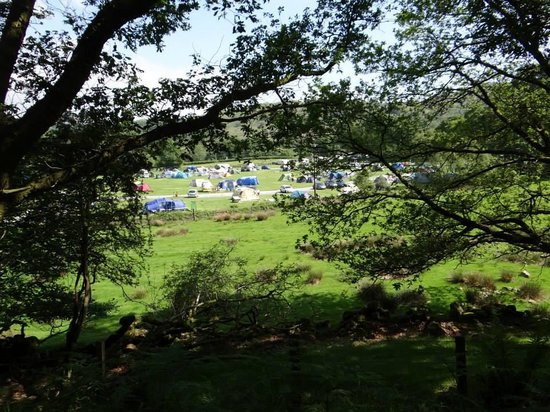 Fisherground Campsite: View from the trainline