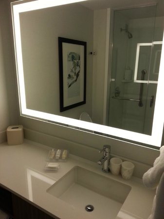 Hilton Garden Inn New York/Central Park South-Midtown West: bathroom mirror