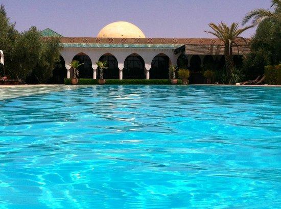 la piscine de r ve picture of manzil la tortue marrakech tripadvisor