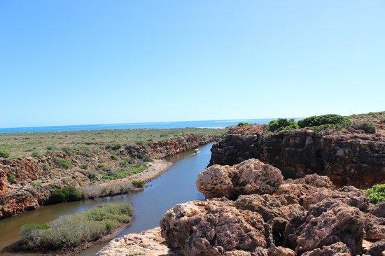 Cape Range National Park: Yardie creek