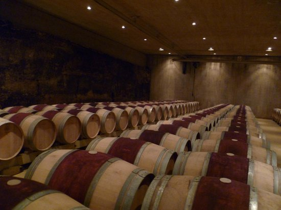 Thabuca Wine Tours: Barrels resting