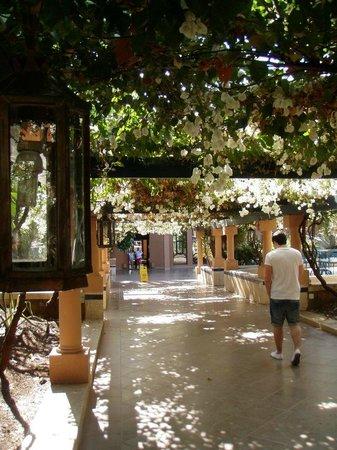 Hotel Riu Tikida Garden: walk from hotel to pool