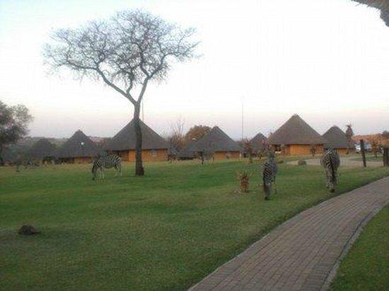 Heia Safari Ranch: Rondavells area