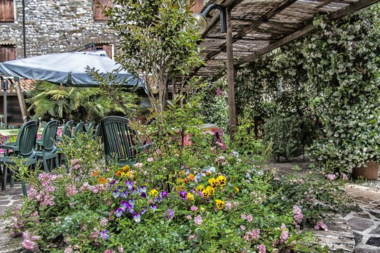 Alla Frasca: garden