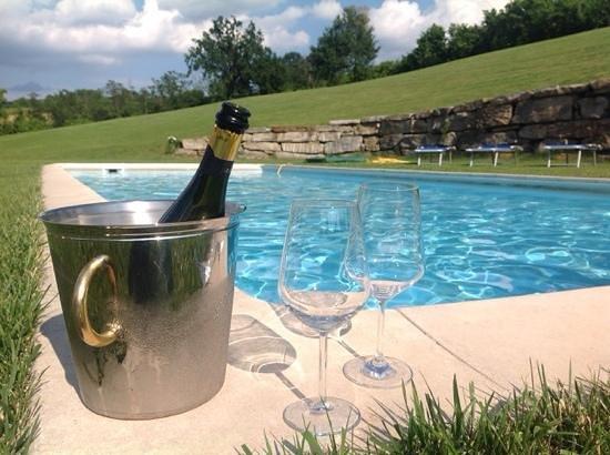 Albergo Ristorante La Spiga: aperitivo in piscina