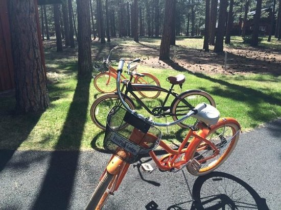 Five Pine Lodge & Spa : Bikes you can borrow for a ride