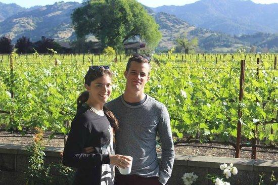 Chateau de Vie's vines!