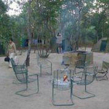 Miombo Safari Camp: Camping ground
