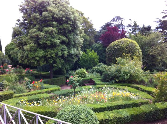 Villa Scacciapensieri : Luscious gardens