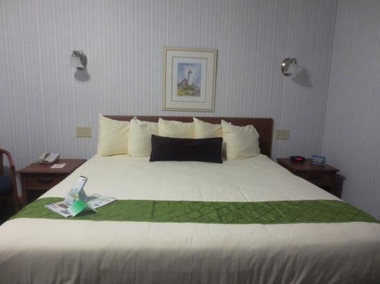 BEST WESTERN Acadia Park Inn: room 303