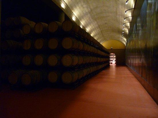Hotel Eguren Ugarte: Wine Cellars