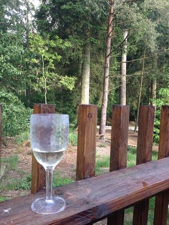 Forest Holidays Cropton, North Yorkshire: best view from a hot tub that you'll ever have...