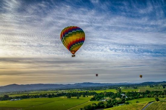 Balloons Above the Valley: Ballons over Napa in the Morning