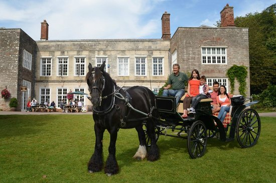 Cockington Carriage Company Horse & Carriage Rides