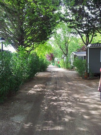 Tamarit Park Resort: shady mobile home site
