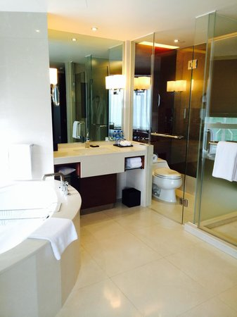 Hyatt Regency Hong Kong, Tsim Sha Tsui: Clean& good amount of space