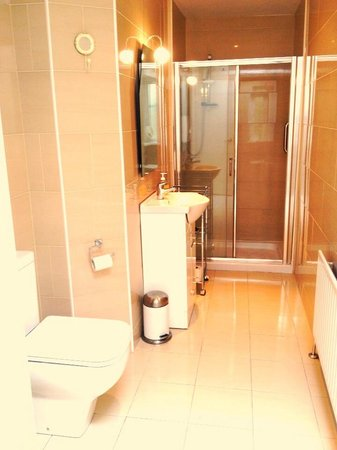 Clonmore House: En-suite