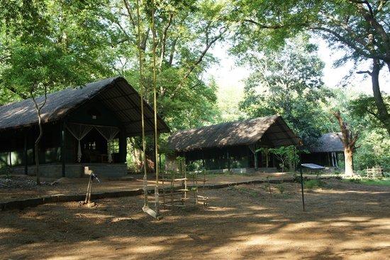 Galibore Nature Camp: Te tents