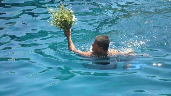 Sugar's Boat Tours: Frische Kräuter von der Insel